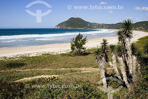 Assunto: Praia da Silveira / Local: Garopaba (SC) / Data: 17 de Setembro de 2008