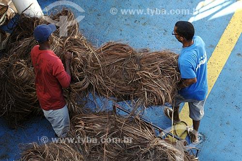 Assunto: Fibra de Sisal / Local: Bom Despacho (BA) / Data: 18 de Julho de 2008