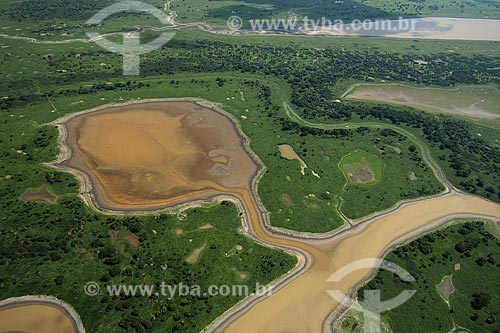 Assunto: Várzea do rio Amazonas, ao sul de Itacoatiara / Local: Amazonas (AM) / Data: 29 de Outubro de 2007