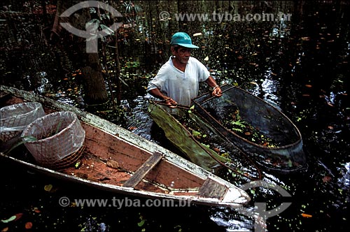 Assunto: Pesca tradicional de peixes ornamentais em igapó do Rio Negro / Local: Amazonas (AM) - Brasil / Data: 2004
