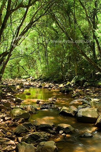 Assunto: Rio Fortaleza, dentro das Termas de São João / Local: São João do Oeste - Santa Catarina (SC) - Brasil / Data: 13/02/2009