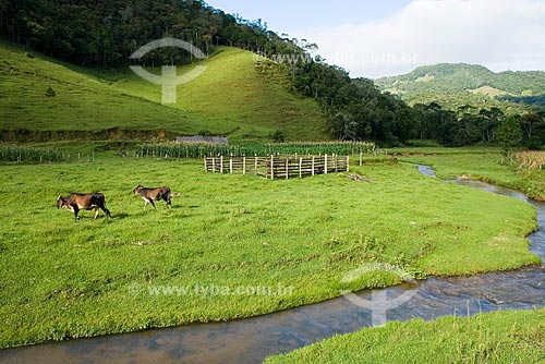 Assunto: Paisagem rural no distrito de Santa Isabel / Local: Águas Mornas - Santa Catarina (SC) - Brasil / Data: 22/02/2009