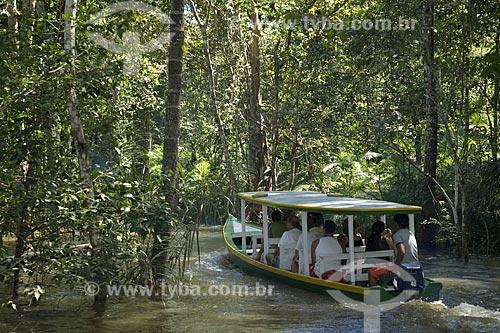 Assunto: Barco de turismo na mata de várzea do Rio Amazonas inundado / Local: Perto de Manaus - Amazonas - Brasil / Data: Junho de 2007