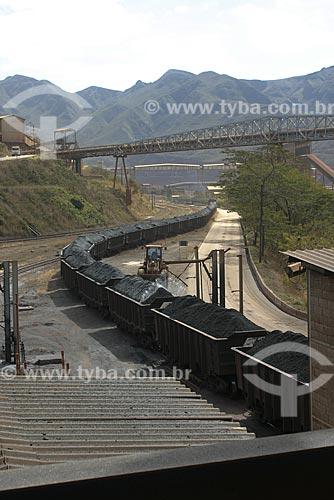Assunto: Transporte de Minério de Ferro - Mina de Timbópeba - Vale do Rio Doce / Local: Mariana - Minas Gerais (MG) - Brasil / Data: Agosto de 2007