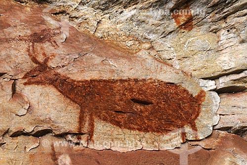 Pinturas rupestres no  Sítio Arqueológico Pedra Pintada  - Barão de Cocais - Minas Gerais - Brasil