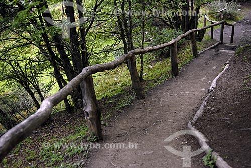 Assunto: Trilha no Parque Nacional Terra do Fogo / Local: Ushuaia - Argentina / Data: 11 / 2008
