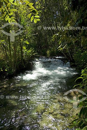 Assunto: Rio Formiga, de águas cristalinas, e a mata ciliar, no Parque Estadual do Jalapão / Local: Tocantins (TO) - Brasil / Data: Junho de 2006