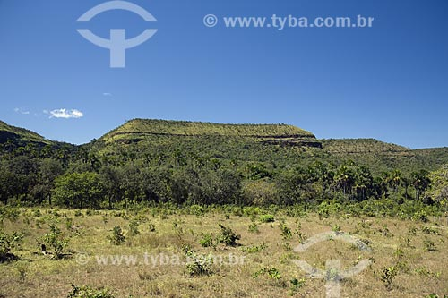 Assunto: Cerrado, na serra do Lajeado, perto de Palmas / Local: Tocantins (TO) - Brasil / Data: Junho de 2006