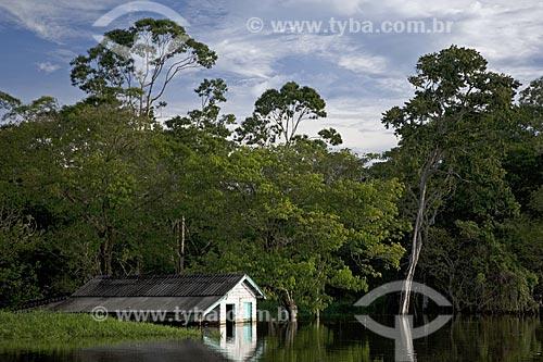 Assunto: Casa de ribeirinho inundada pela cheia da floresta amazônica de várzea, perto de Terra Santa / Local: Pará (PA) - Brasil / Data: Junho de 2006