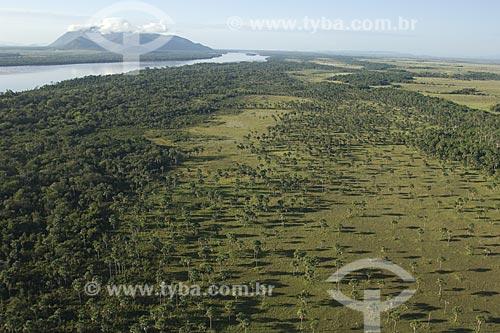 Assunto: Mata ripária do rio Branco e áreas alagáveis, onde se formam lagoas temporárias em sua várzea, ao norte de Boa Vista / Local: Roraima (RR) - Brasil /  Data: Janeiro de 2006