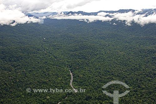 Assunto: Floresta amazônica de terra-firme no alto do maciço do Parque Nacional da Serra da Mocidade, a sudoeste de Caracaraí / Local: Roraima (RR) - Brasil / Data: Janeiro de 2006