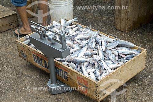 Asunto: Caixa de peixes sendo pesada no Mercado Municipal / Local: Rio Branco - Acre - Brasil / Data: 06/2008