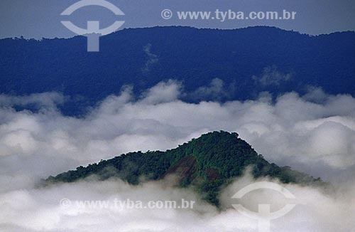 Assunto: Parque Nacional Serra da Mocidade / Local: Roraima (RR) - Brasil / Data: Março de 2009