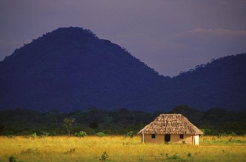 Assunto: Maloca, habitação indígena típica / Local: Roraima (RR) - Brasil / Data: Março de 2009