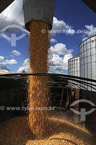Assunto: Silos para secagem e armazenamento de graos de milho - Juparana Agricola / Local: Paragominas - Pará - Brasil / Data: 30-03-2009