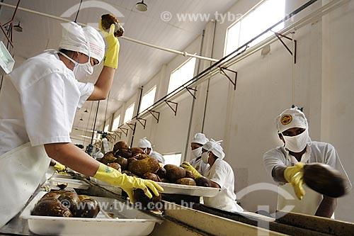 Assunto: Beneficiamento de cupuacu, producao de polpa para exportacao pela CAMTA (Cooperativa Agricola Mista de Tome-Acu/ Local: Tome-Acu - Pará - Brasil / Data: 01-04-2009