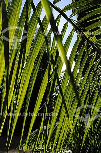 Assunto: Museu Paraense e Parque Botânico Emílio Goeldi / Local: Belém - Pará - Brasil / Data: 05-05-2009