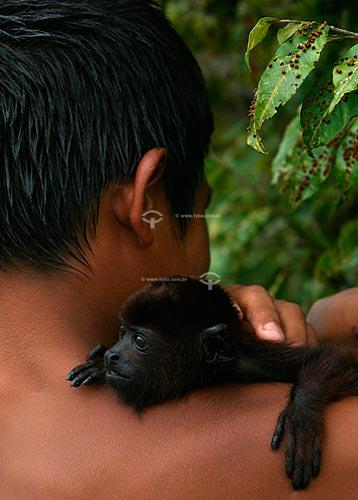 Assunto: Pequeno Bugio (Alouatta sp.)   / Local:  Amazonas (AM) - Brasil  / Data: