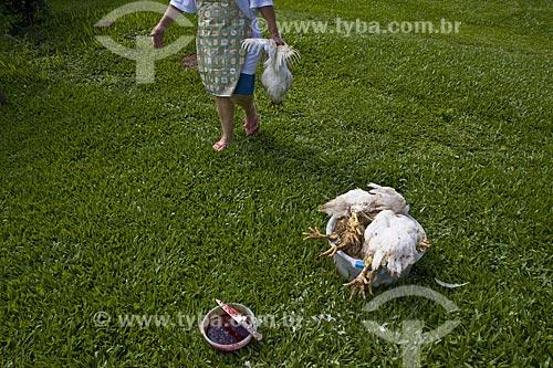 Assunto: Senhora matando frangos em seu quintal  / Local:  Nova Friburgo - RJ - Brasil  / Data: 2007