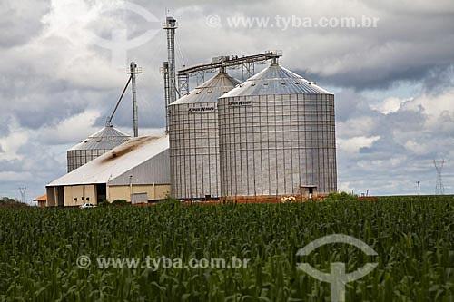 Assunto: Plantação de milho e silos na BR-163  / Local:  Mato Grosso (MT) - Brazil  / Data: Abril de 2009