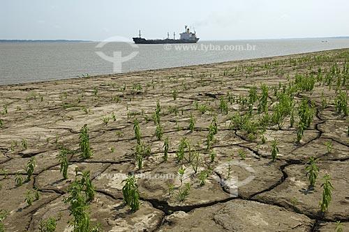 Assunto: Margem direita do rio Amazonas, solo exposto pela seca  / Local:  Amazonas (AM) - Brasil  / Data: 11/2008