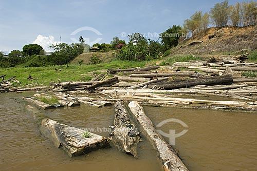 Assunto: Madeira cortada da floresta amazônica na beira do rio Amazonas  / Local:  Itacoatiara - Amazonas (AM) - Brasil  / Data: 11/2007
