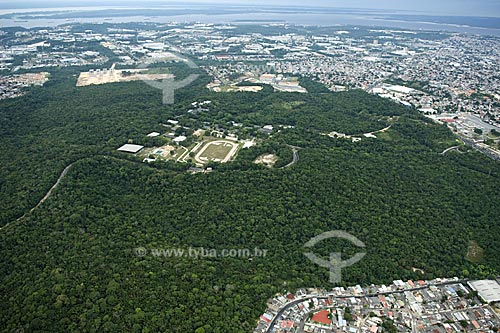 Assunto: Mata da Universidade Federal do Amazonas - UFAM  / Local:  Manaus - Amazonas (AM) - Brasil  / Data: 11/2007