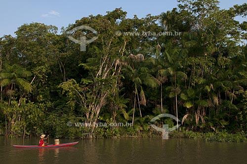 Assunto: Açaízal / Local: Abaetetuba - Pará - Brasil / Data: 01/11/2009