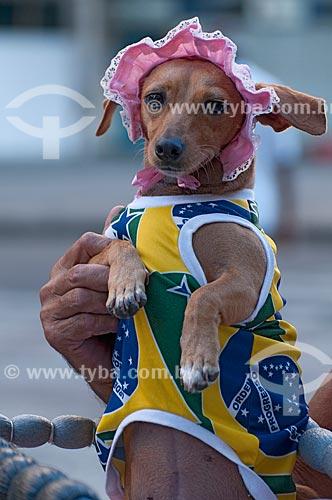 Assunto: Cachorro vestido com camiseta da Bandeira do Brasil durante carnaval de rua carioca  / Local: Rio de Janeiro - RJ - Brasil  / Data: 16/02/2010