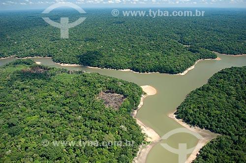 Assunto: Floresta amazônica ao sul de Nova Olinda do Norte  / Local:  Amazonas (AM) - Brasil  / Data: 11/2007