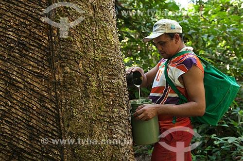 Assunto: Seringueiro colhendo latex natural para a fabrica de preservativos Natex / Local: Xapuri - Acre (AC) - Brasil / Data: 10/07/2008