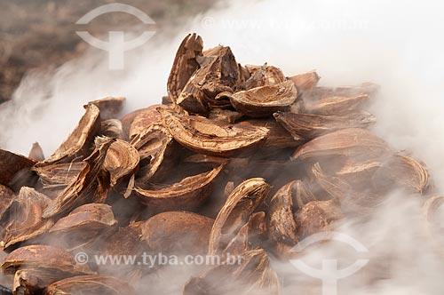 Assunto: Cascas do fruto de babaçu queimando / Local: Juverlânia - Tocantins - Brasil / Data: 20/11/2009