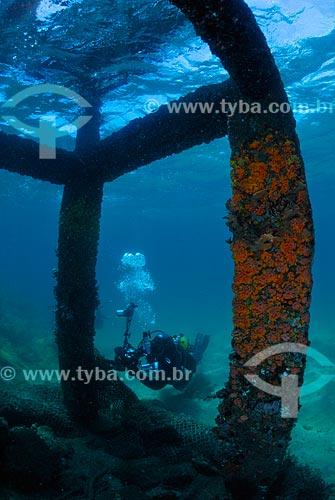 Assunto: Mergulhador sob atracadouro em Angra dos Reis, RJ / Local: Baía da Ilha Grande - Angra dos Reis - Rio de Janeiro (RJ) - Brasil / Data: 04/06/2010