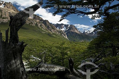 Assunto: Árvore morta no Parque Nacional Los Glaciares  / Local:  El Chalten - Patagônia - Argentina  / Data: 02/2010