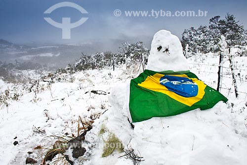 Assunto: Boneco de neve coberto com bandeira do Brasil / Local: Urubici - Santa Catarina (SC) - Brasil / Data: 05/08/2010