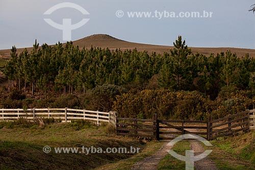 Assunto: Cerca e porteira de fazenda  / Local:  Campos de Cima da Serra - Rio Grande do Sul  / Data: 09 /2010