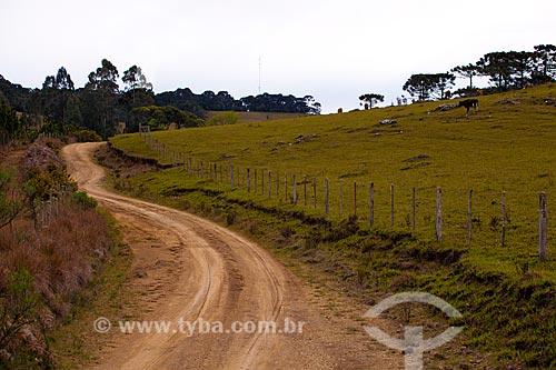 Assunto: Estrada de terra  / Local:  Campos de Cima da Serra - Rio Grande do Sul  / Data: 09 /2010