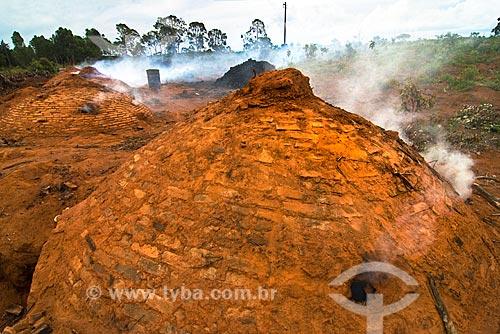 Assunto: Produção de Carvão Vegetal em processo rústico  / Local:  Proximidade de Diamantina - Minas Gerais -  MG Data: 12 / Data: 12/ 2009