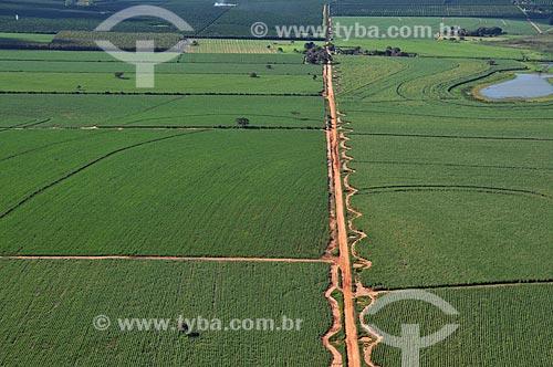 Assunto: Vista aérea de canavial na área rural da cidade de Sabino  / Local:  Sabino - São Paulo - SP  / Data: 02/2009