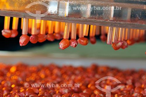 Assunto: Labotatório Físico-Fisiológico - Máquina sugadora de sementes para teste de germinação  / Local:  Uberlândia - Minas Gerais - MG  / Data: 12/2008