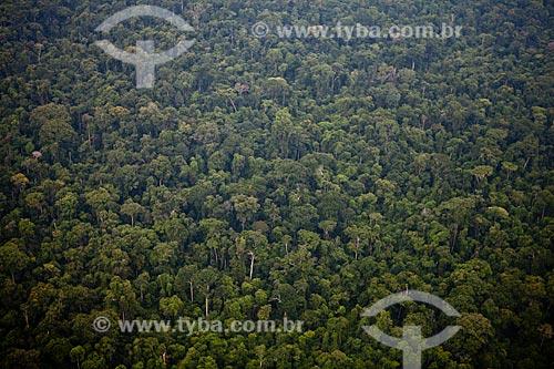 Assunto: Floresta Nacional de Carajás  / Local:  Pará - PA - Brasil  / Data: 2010