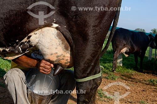 Assunto: Trabalhador rural tirando o leite da vaca na Estação Conhecimento da Área de Proteção Ambiental (APA) do Igarapé do Gelado  / Local:  próximo à cidade de Parauapebas - Pará - Brasil  / Data: 10/2010