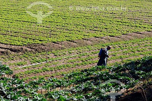Assunto: Agricultor trabalhando em plantação de hortaliças na Região Serrana Fluminense - Estrada Teresópolis-Friburgo  / Local:  Teresópolis - Rio de Janeiro - RJ - Brasil  / Data: 08/2010