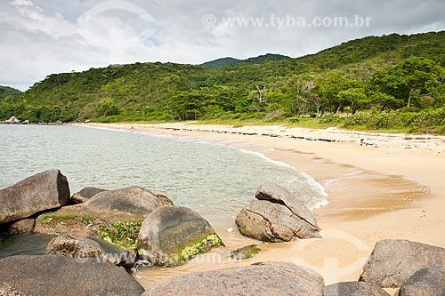 Assunto: Praia do Cardoso / Local: Bombinhas - Santa Catarina (SC) - Brasil / Data: 11/01/2011