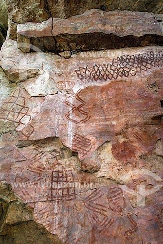 Assunto: Pinturas pré-históricas de até 11 mil anos atrás. Município de Costa Rica - Mato Grosso do Sul. / Local: Município de Costa Rica - Mato Grosso do Sul (MS) - Brasil / Data: Julho 2006