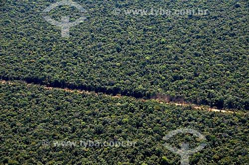 Assunto: Vista aérea de mata de transição na região de Canarana  / Local:  Canarana -  Mato Grosso - MT  / Data: 07/2009