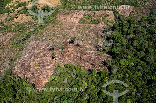 Vista aérea de area desmatada na aldeia Aiha Kalapalo  - Querência - Mato Grosso - Brasil