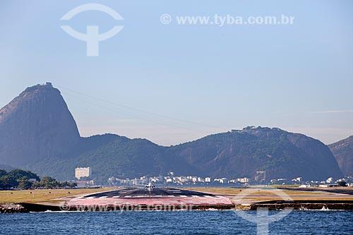Assunto: Avião na pista do Aeroporto Santos Dumont com Pão de Açúcar ao fundo / Local: Rio de Janeiro - RJ - Brasil / Data: 02/2011