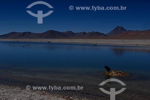 Assunto: Lagoa Diamante (Laguna Diamante) / Local: Chile - América do Sul / Data: 01/2011
