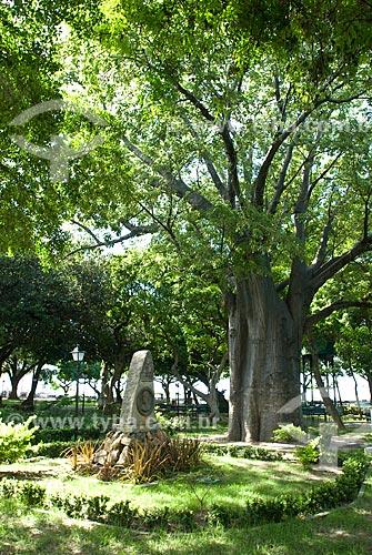 Assunto: Baobá e monumento ao Barão de Studart na Praça dos Martíres / Local: Fortaleza - Ceará (CE) - Brasil / Data: 04/2010